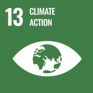 United-Nations-Sustainable-Development-Goals (13)