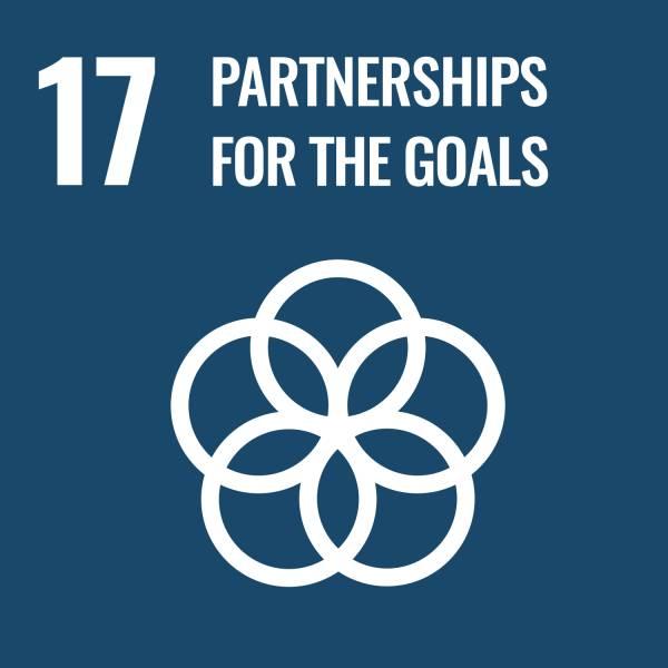United-Nations-Sustainable-Development-Goals (17)